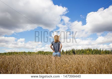The backside upper body of teenage girl with her hands in back pockets and long curly hair standing in a ripe field of wheat under cloudy sky in autumn