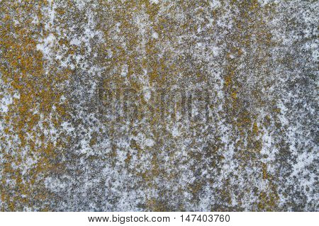moss covered stone grunge grim bump texture