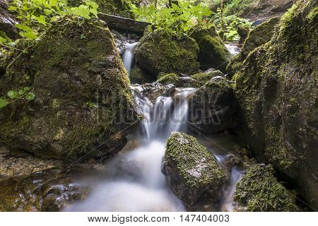 Mountain river flowing through the green forest. Stream in the wood. Waterfall in the forest.