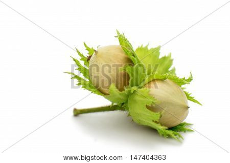 green hazelnuts  organic on a white background