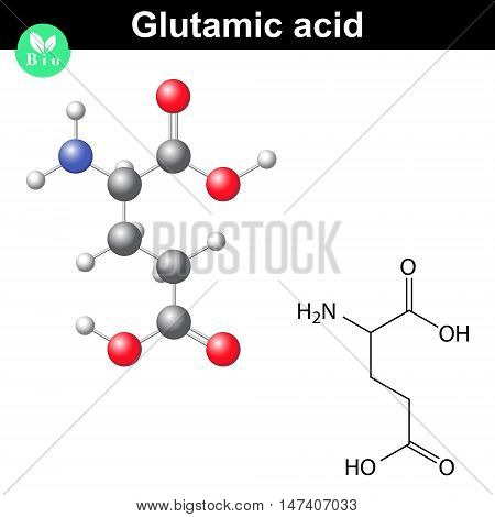 Glutamic acid - main amino acid and neurotransmitter chemical structure and molecular formula 2d and 3d illustration vector eps 8