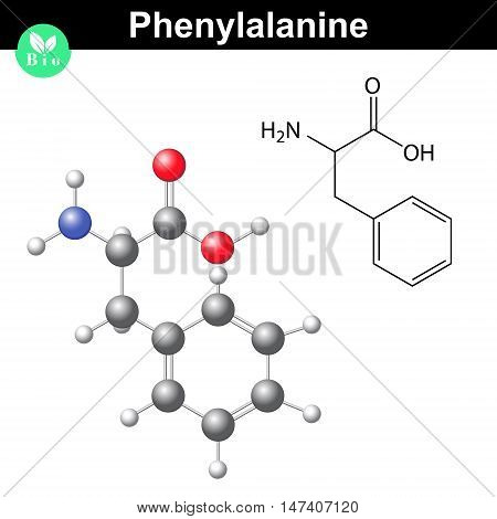 Phenylalanine essential amino acid molecular formula and model 2d and 3d illustration vector on white background eps 8