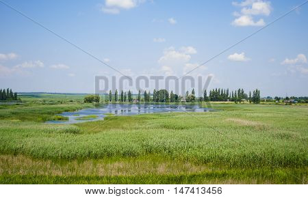 landscape of sky with clouds and the lake overgrown with reeds summer and a house with a red roof and trees in the distance