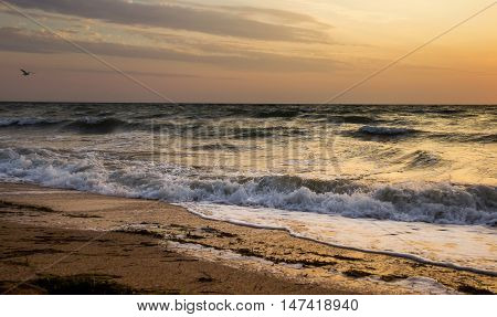 landscape of the sunrise over the stormy sea