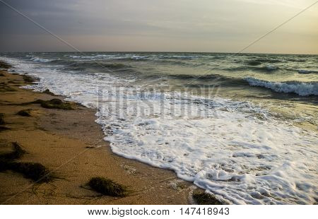 landscape of morning sea beach in stormy weather