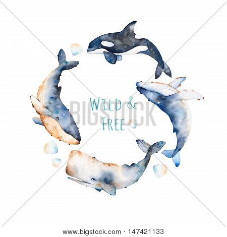 Wreath on white background with blue whale, fin whale and sperm whale