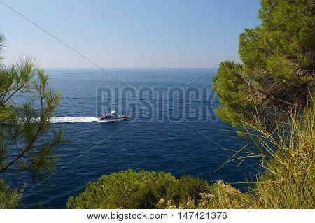 a little white boat floating in blue sea with tourists the gaze of the traveler through the pine trees to the sea