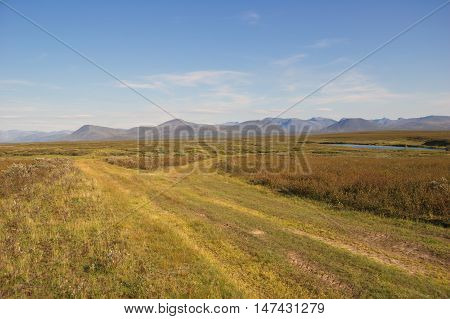 All-terrain road to the tundra in the polar Urals.