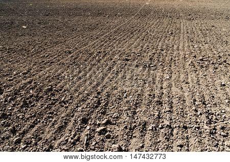 black plowed field in spring