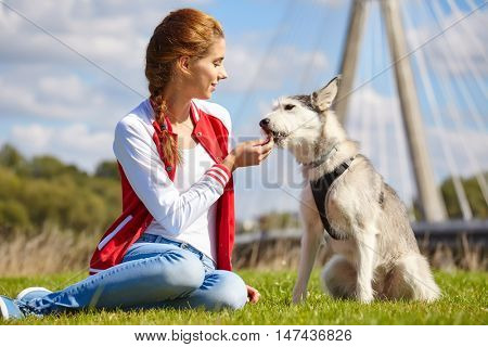 girl and dog playing outdoors