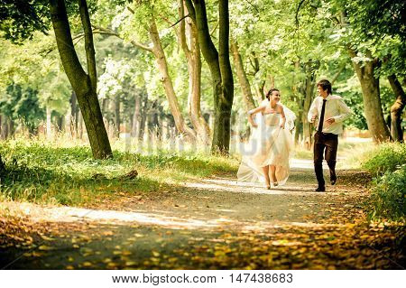 happy bride and groom on a walk in a beautiful forest true love