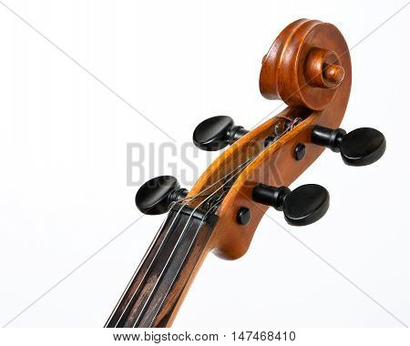 Vulture of violin with strings on a white background