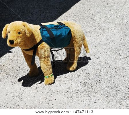 Puppy toy standing alone outside with backpack.
