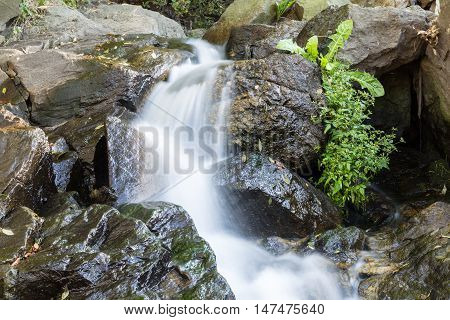 River is flowing down through rocks. Grass growing in the rock.