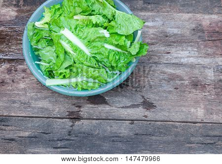 Chinese cabbage organic vegetables Soak and wash on the wooden floor