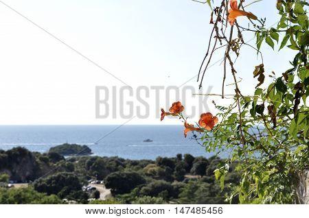 vista dal paese di orsera in croazia