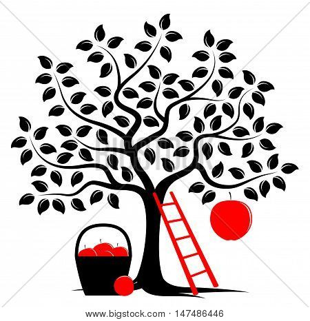 vector apple tree with one big apple, ladder and basket of apples isolated on white background