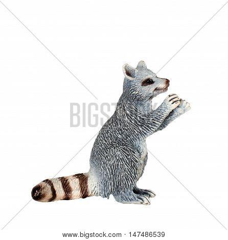 Toy raccoon isolated on white background. Raccoon zoo  toy animal