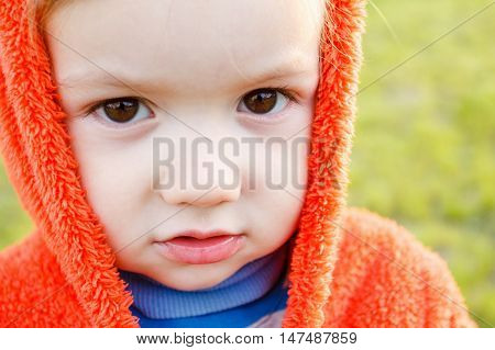 Young boy exploring nature in a meadow. Closeup portrait