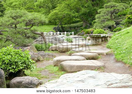 Two Benches, Green Plants, Flowers, Stone Road And Lake In Garden