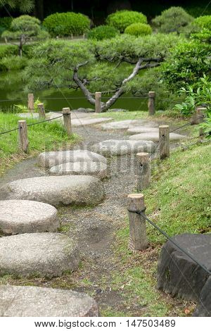 Vertical Pine Tree, Stone Road In Japanese Zen Garden