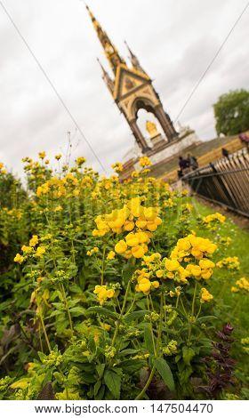 The Albert memorial in Hyde park with yellow daffodils in the foreground.