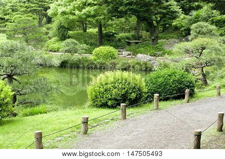 Bench, Green Plants, Stone Road And Lake In Garden