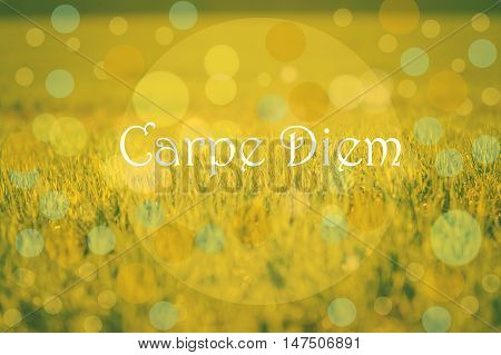 the message of carpe diem in