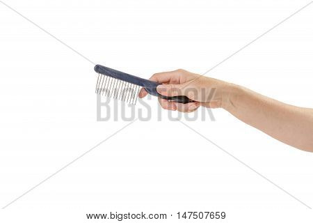 Woman hand is holding comb for grooming pets isolated on the white background