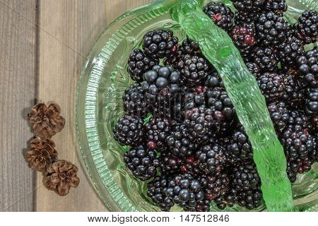 Close up of freshly picked blackberries in a green glass basket on wooden table with pinecones