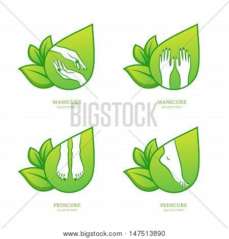 Vector set of womens manicure and pedicure logo emblem label design template. Female hands with green leaves. Concept for beauty salon manicure and pedicure cosmetics organic body care and spa.