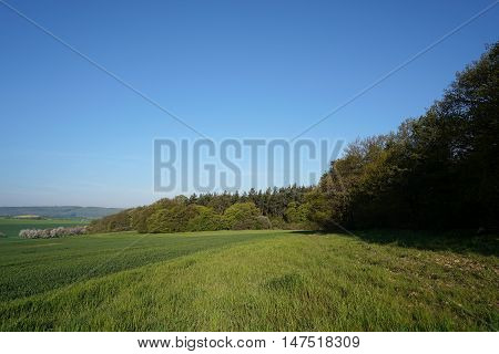 Landscape in the Harz National Park at Timmenrode