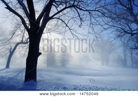 Winter landscape with sun breaking through fog
