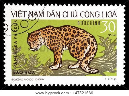 VIETNAM - CIRCA 1972 : Cancelled postage stamp printed by Vietnam, that shows Panthera.