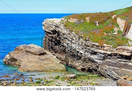 Summer Blossoming Atlantic Coast (galicia).