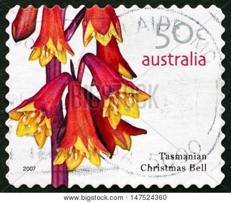 AUSTRALIA - CIRCA 2007: a stamp printed in Australia shows Tasmanian Christmas Bell Blandfordia Punicea Flowering Plant circa 2007