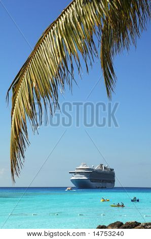 Palm tree branch and cruise ship in background - Selective focus on foreground
