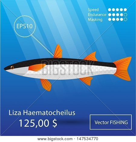Vector flat mullet icon. Tropical fish. Eps10