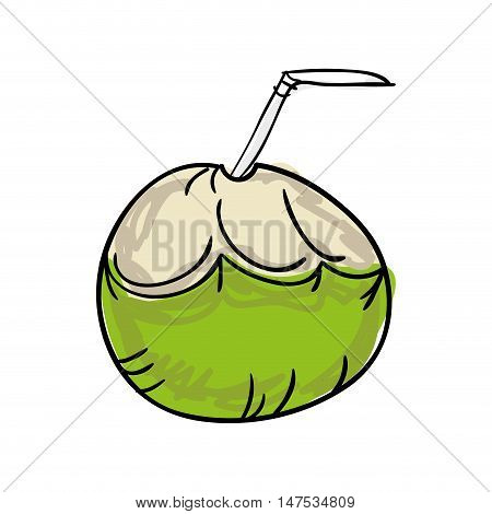 fresh coconut drink with straw. drawn design. vector illustration