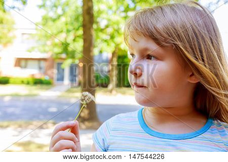 Cute blond little girl blowing a dandelion blow