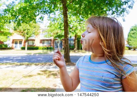 Cute blond little girl blowing a dandelion blow