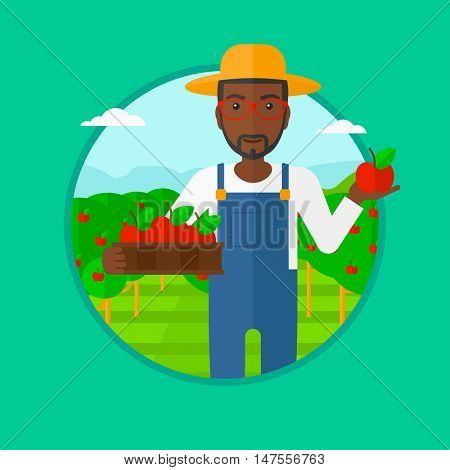 An african-american man standing in the garden and holding a crate full of apples in hands. Young male farmer collecting apples. Vector flat design illustration in the circle isolated on background.