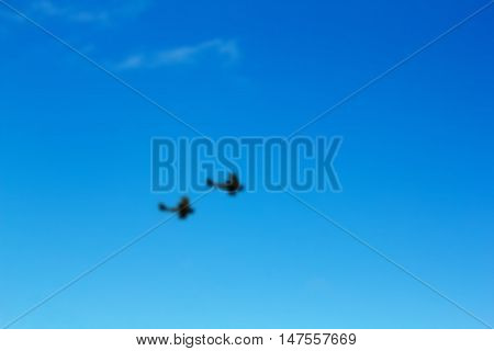Pair Of Biplanes Against A Blue Sky Out Of Focus.
