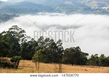 Misty Valley Hills Homes