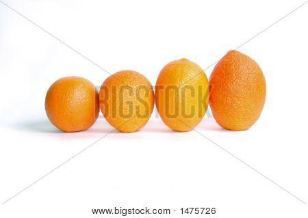 Orange'S Parade