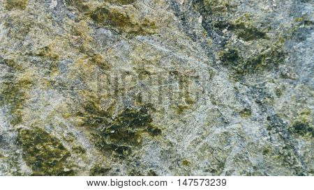 Stone texture background Serpentinite wide angle light