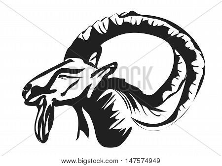 Ibex abstract silhouette isolated on white background