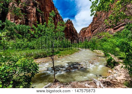 Beautiful Cliffs and Rock Formations Along the River in Zion National Park Utah.