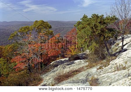 Fall Foliage At Bear Mountain