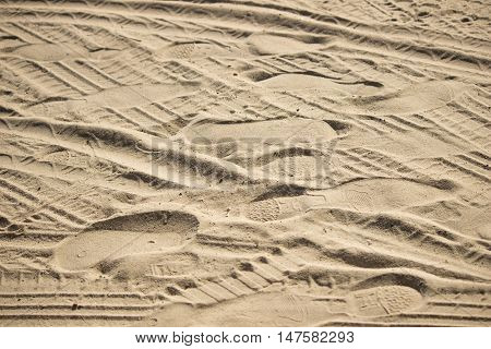 Imprint in the sand from the wheels of the car people and birds.